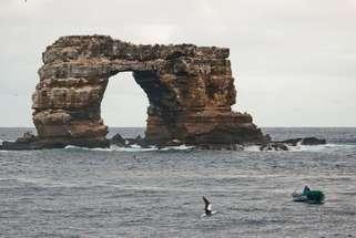 Darwin's Arch Top Tauchplatz in Nord Galapagos