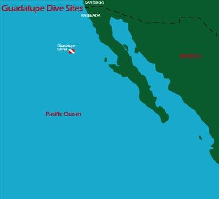 Karte Tauchplatz Insel Guadalupe weisse Haie