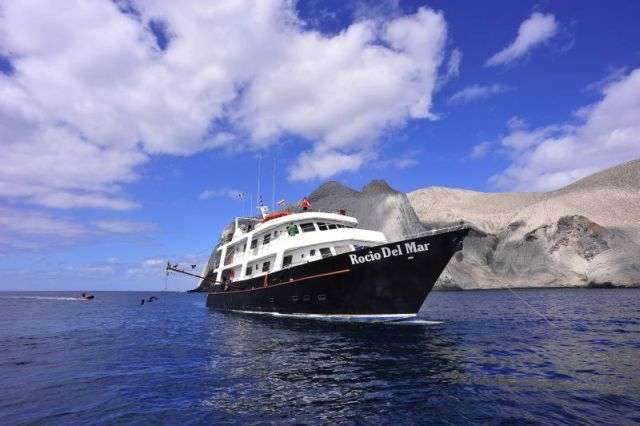 Rocio del Mar Tauchreisen Socorro