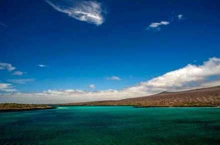 Die Isla Lobos in San Cristobal Galapagos