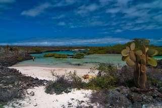 Insel Santa Cruz in den Galapagos Archipel Ecuadorianischer Pazifik