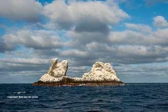 La Roca Partida Socorro island Archipelago Mexico