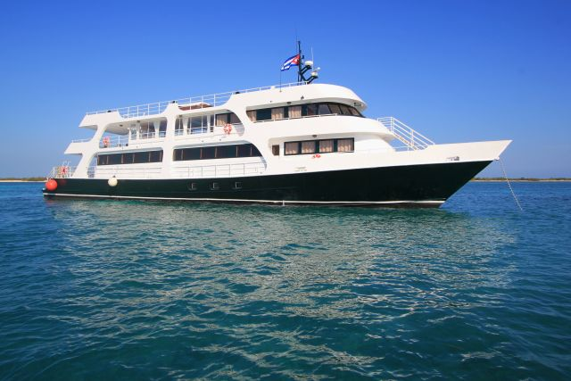 Avalon 2 Dive cruises to the Garden of Queens archipelago Jardines de la reina