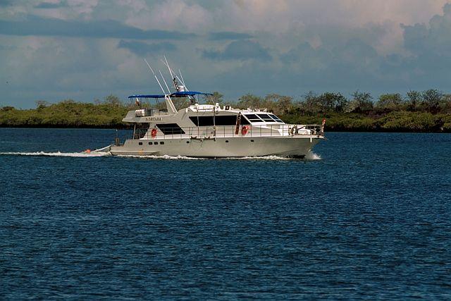 Nortada Galapagos Liveaboard