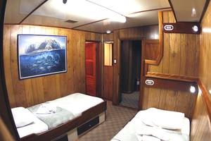 Cabin 2 on Sea Hunter Liveaboard Cocos diving cruises
